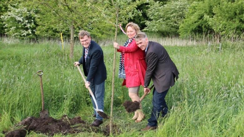 Johann Wadephul, MdB Beate Nielsen und Hans Hinrich Neve, MdL pflanzen den Baum.